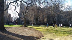 Georgetown photo 2