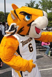 Tour Along with College Essay Whiz: Towson University
